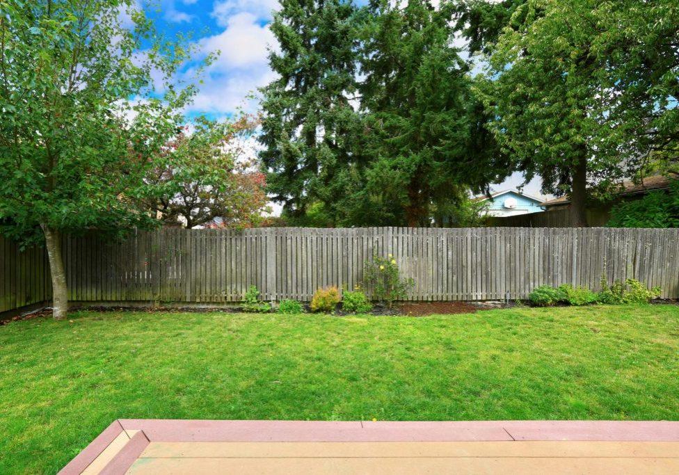 wood fences in back yard